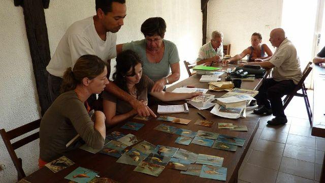 L'appui d'ornithologues expérimentés facilite l'apprentissage