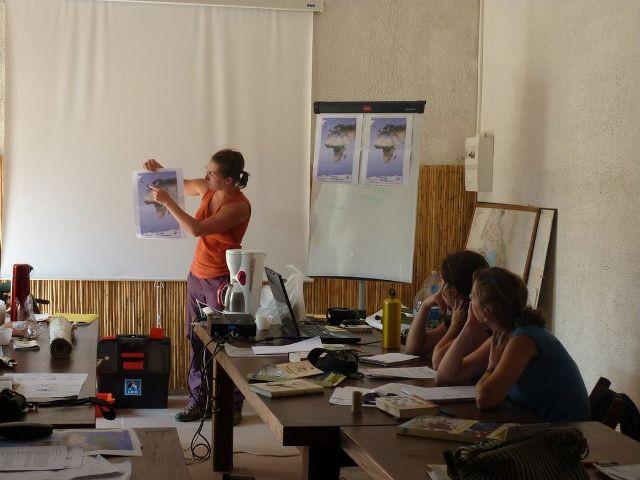 Compte rendu en grand groupe sur le travail effectuer sur les migrations des limicoles.
