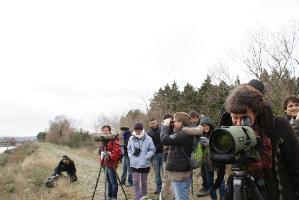 la longue(vue s'avère très utile pour déterminer les oiseaux d'eau © Aline Guillemet