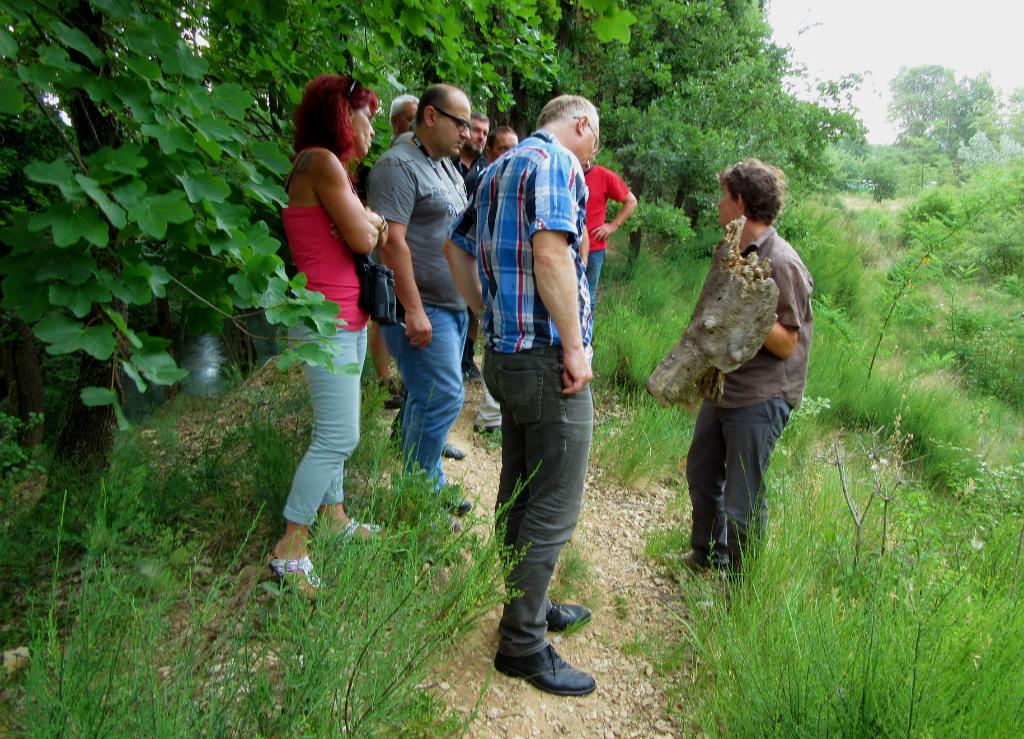 Robin explique la nécessité de conserver le bois mort sur place © Joanna Raffin