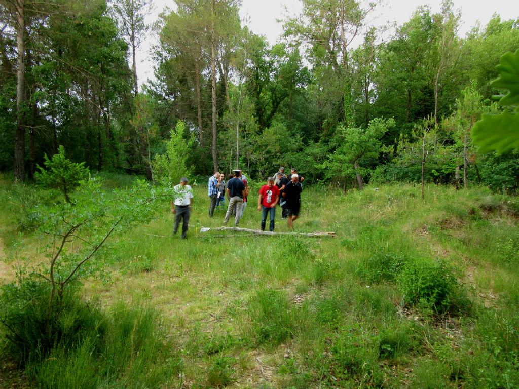 Le groupe se disperse pour chercher un arbre ayant une forte capacité d'accueil de la biodiversité © Joanna Raffin