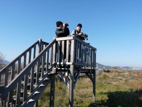 Permanence ornithologique sur la Route du Sel