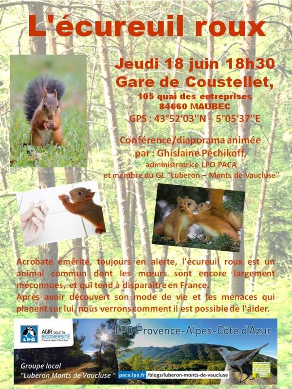2015-06-18-Affiche conf écureuil