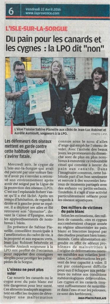 2016-04-22-La Provence-L'Isle sur la Sorgue-lâcher du cygne