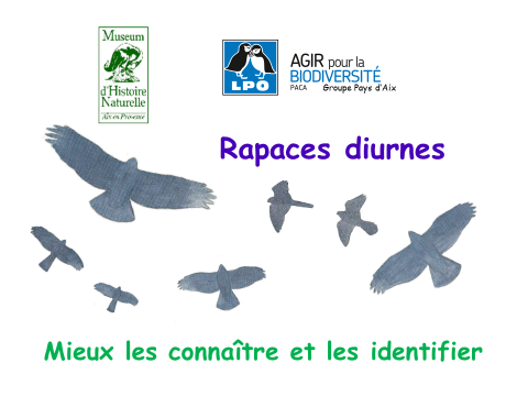 acy-conf-rapaces-mhna-22-09-2016