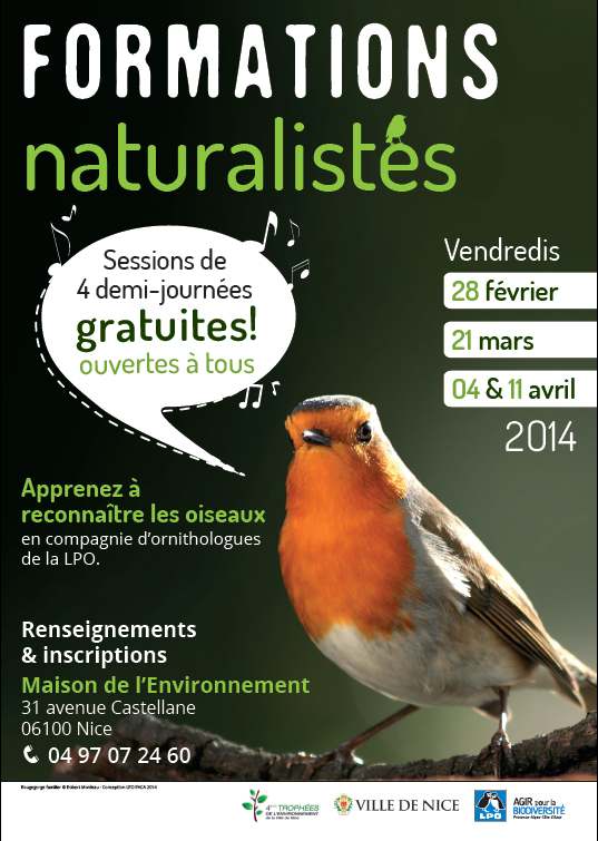 formation ornithologie nice