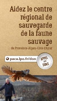 Appel aux dons pour aider le Centre régional de sauvegarde de la faune sauvage
