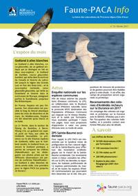 Faune-PACA Info n°13