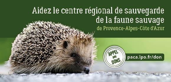 Aidez le centre régional de sauvegarde de la faune sauvage