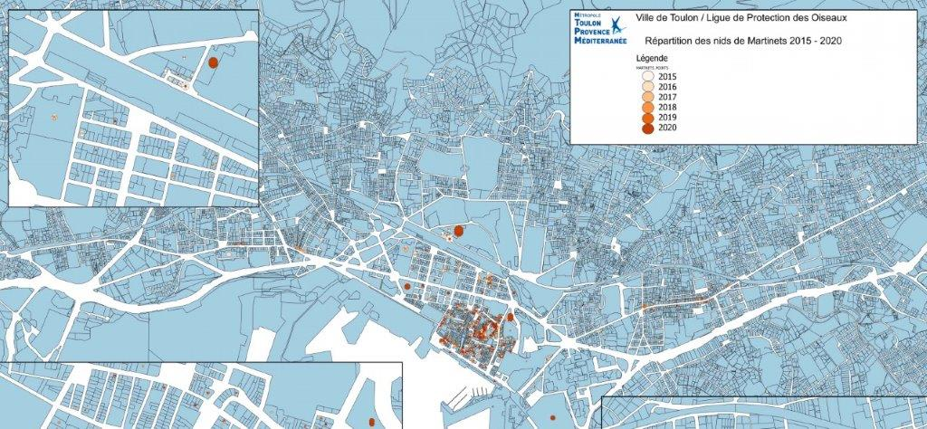 L'attribut alt de cette image est vide, son nom de fichier est toulon-cartographie-des-nids-de-martinets-toulon-2020-cartographie-toulon-martinets-2020-133-ko.jpg.