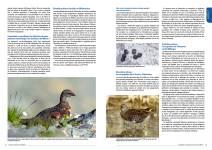 Généralités sur la faune des Bouches-du-Rhône