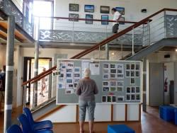 L'actualités ornithologique exposées à l'Espace Nature des salins d'Hyeres