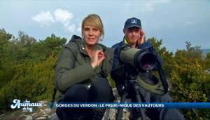 Reportage Direct 8 : Les vautours du Verdon