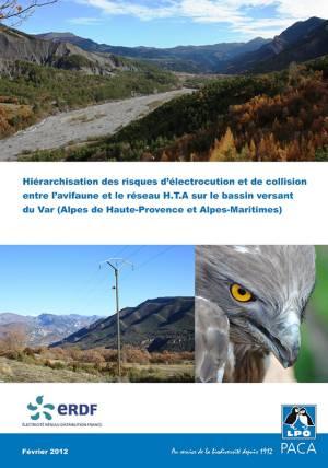 Hiérarchisation des risques d'électrocution et de collision - bassin versant du fleuve Var