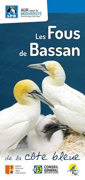 Carte découverte des Fous de Bassan