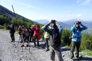 Dernière session de formation acteurs pour les Alpes de Haute Provence © LPO PACA