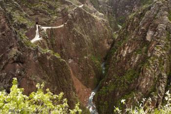 Réserve naturelle régionale des gorges de Daluis
