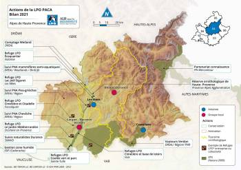 Les actions de la LPO PACA dans les Alpes de Hautes-Provence