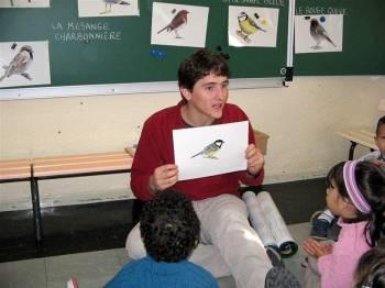 Atelier Les oiseaux, des animaux adaptés