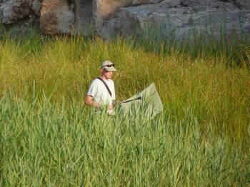 Inventaire naturaliste - photo Micaël Gendrot
