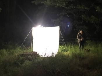 Suivi naturaliste nocturne au Domaine de l'Escarelle © Marine Bertini