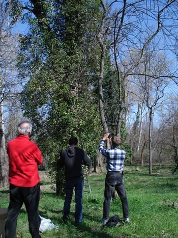 Inventaire naturaliste site de captage du syndicat mixte des eaux de la région Rhône Ventoux