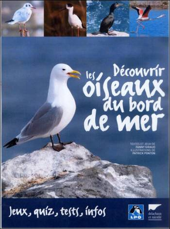 Découvrez les oiseaux du bord de mer en famille