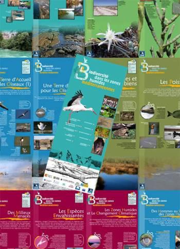 Exposition LPO PACA La biodiversite dans les zones humides