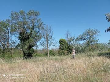 prospection naturaliste