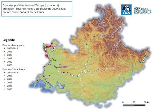 Observations de la Loutre d'Europe 2009 - 2020