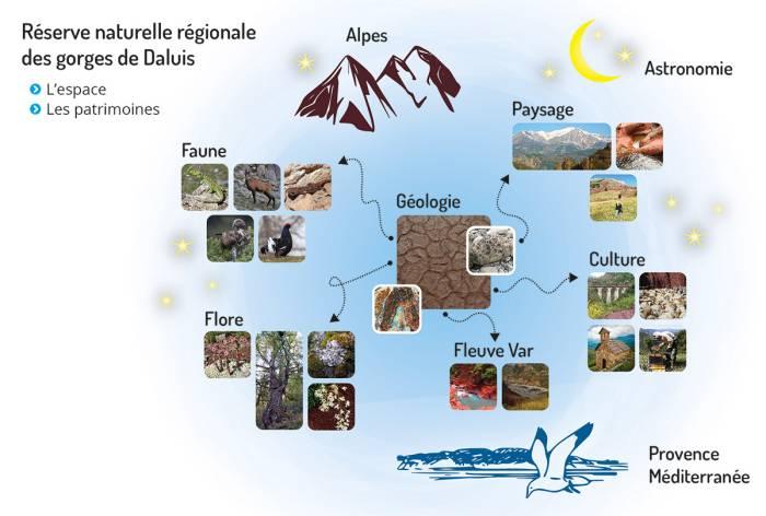 Schéma : l'espace et les patrimoines de la RNR des gorges de Daluis