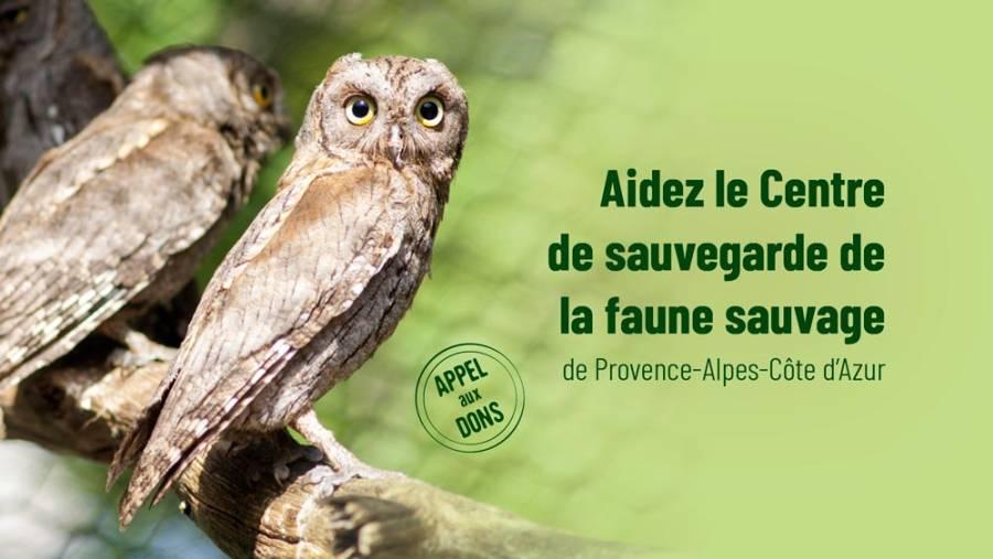 Aidez le Centre régional de sauvegarde  de la faune sauvage de Provence‑Alpes‑Côte d'Azur