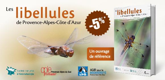 Atlas des libellules de Provence-Alpes-Côte d'Azur