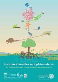 Journée mondiale des zones humides 2020